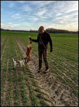 Parson Russell Terrier Vom Mahdenwald